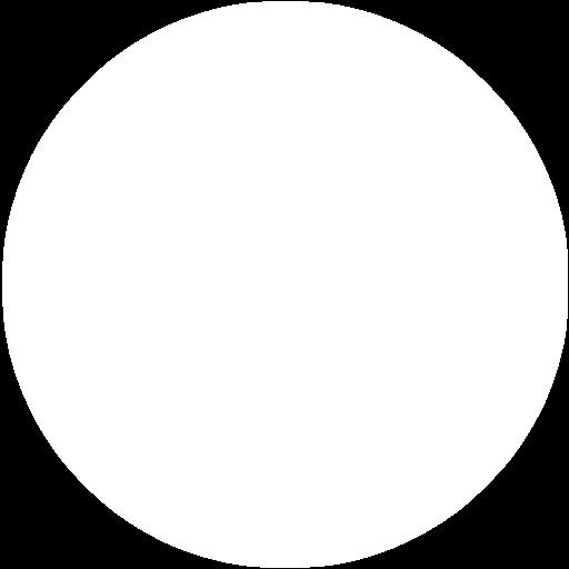 עיגול לבן